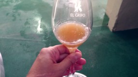cata-vino-ecologico-lanzarote